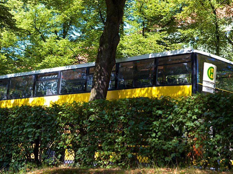 Im Frühling öfter mal ein Bus